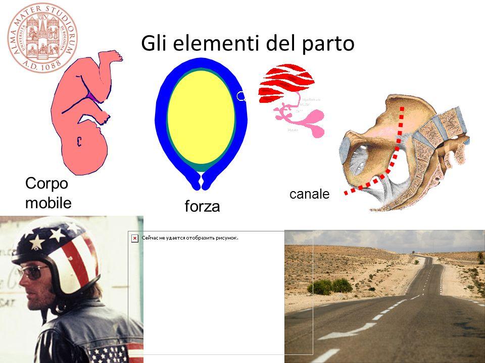 Gli elementi del parto Corpo mobile forza canale