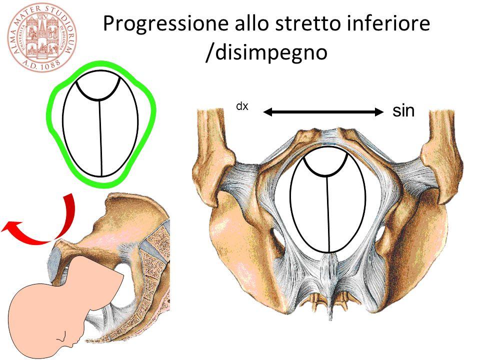 Progressione allo stretto inferiore /disimpegno