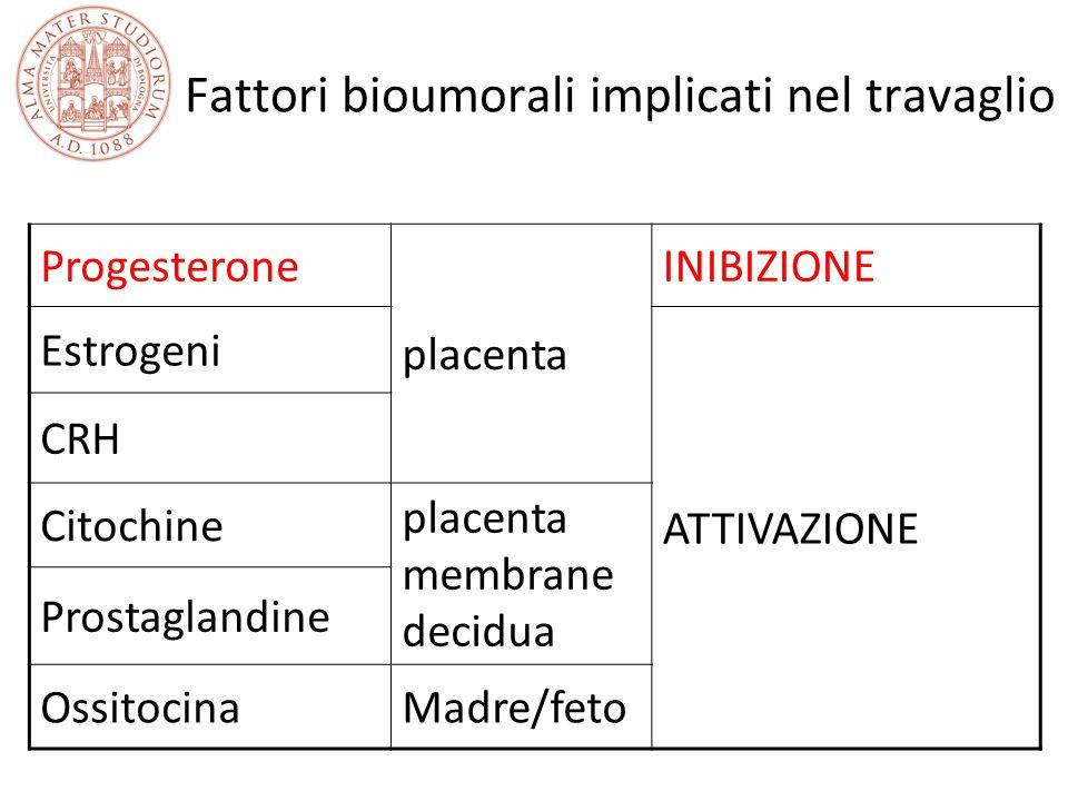 Fattori bioumorali implicati nel travaglio