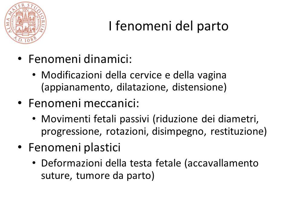 I fenomeni del parto Fenomeni dinamici: Fenomeni meccanici: