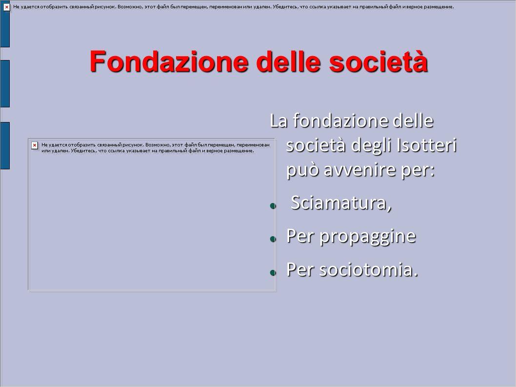 Fondazione delle società