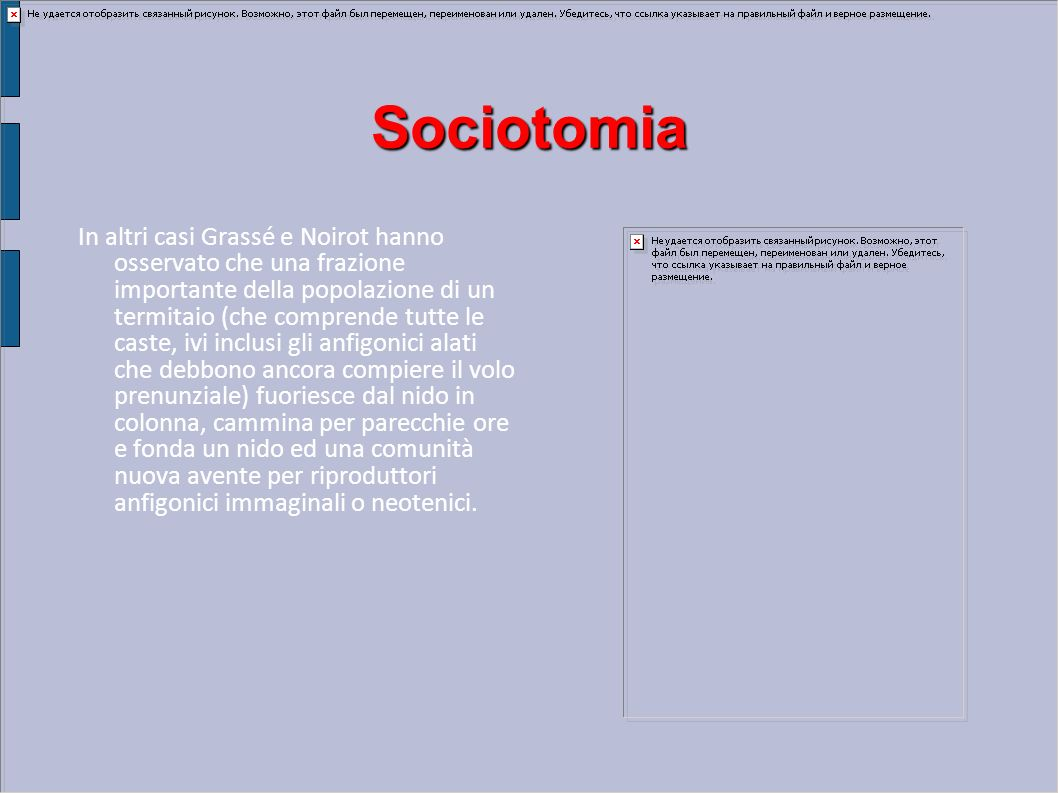 Sociotomia