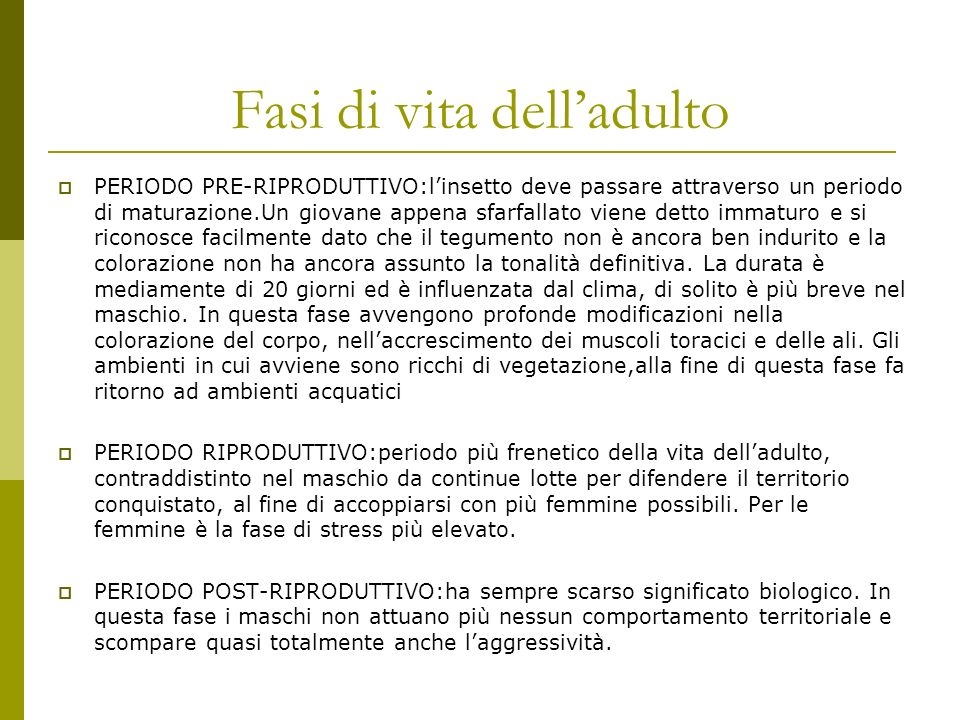 Fasi di vita dell'adulto