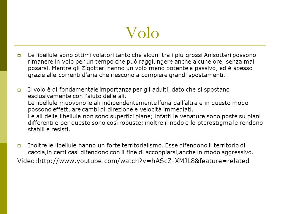 Volo Video:http://www.youtube.com/watch v=hAScZ-XMJL8&feature=related