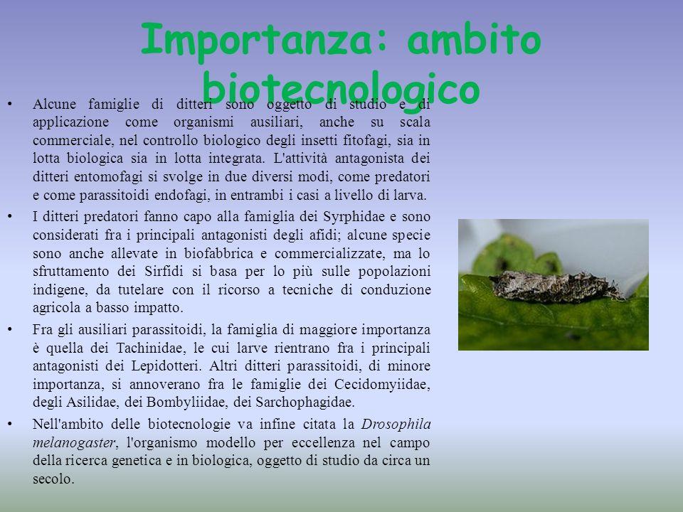 Importanza: ambito biotecnologico