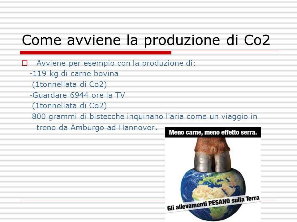 Come avviene la produzione di Co2