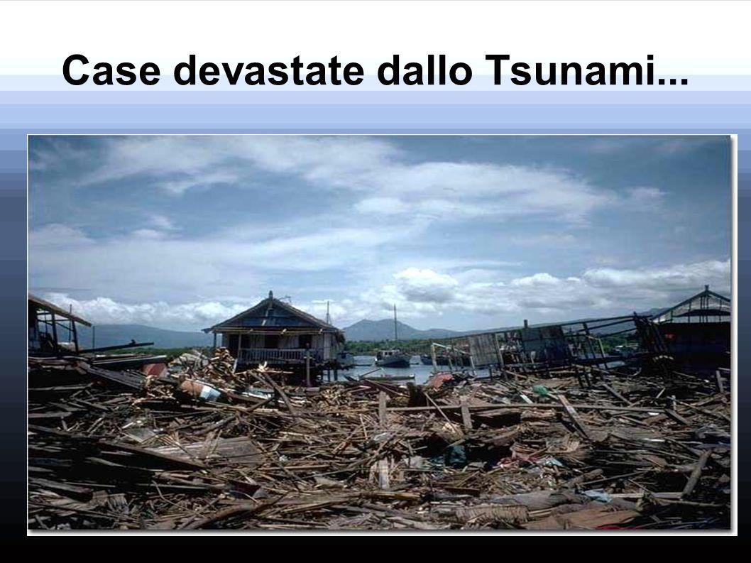 Case devastate dallo Tsunami...