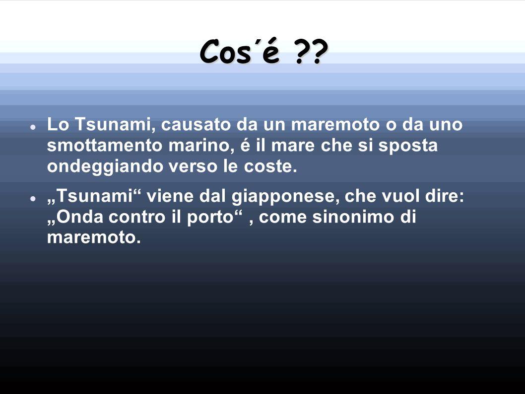 Cos´é Lo Tsunami, causato da un maremoto o da uno smottamento marino, é il mare che si sposta ondeggiando verso le coste.