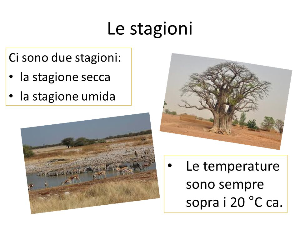 Le stagioni Le temperature sono sempre sopra i 20 °C ca.