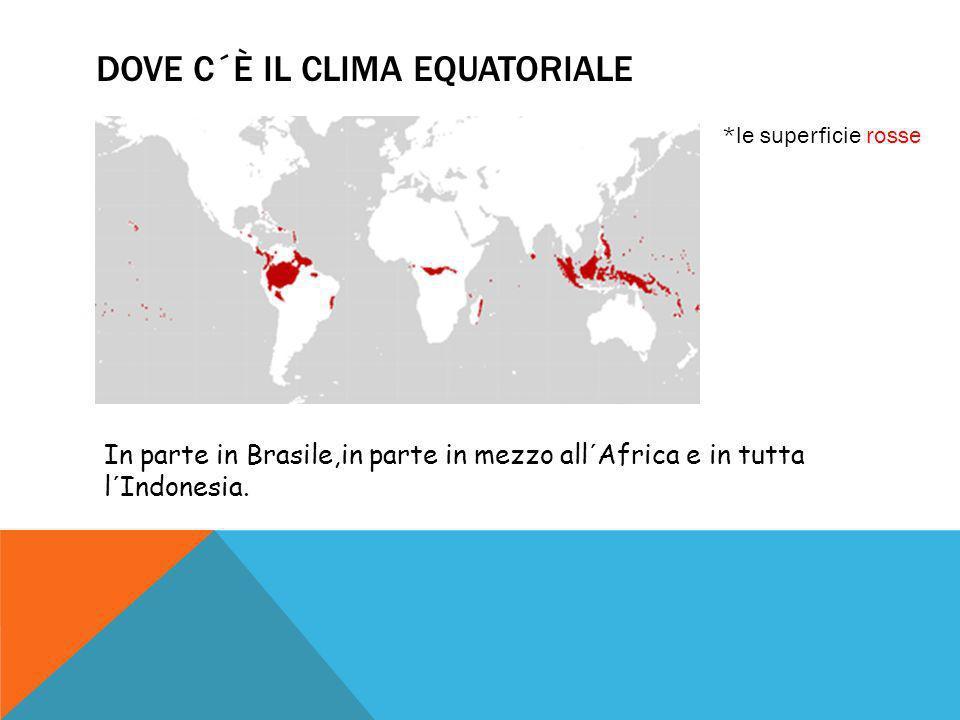 dove c´È IL CLIMA EQUATORIALE