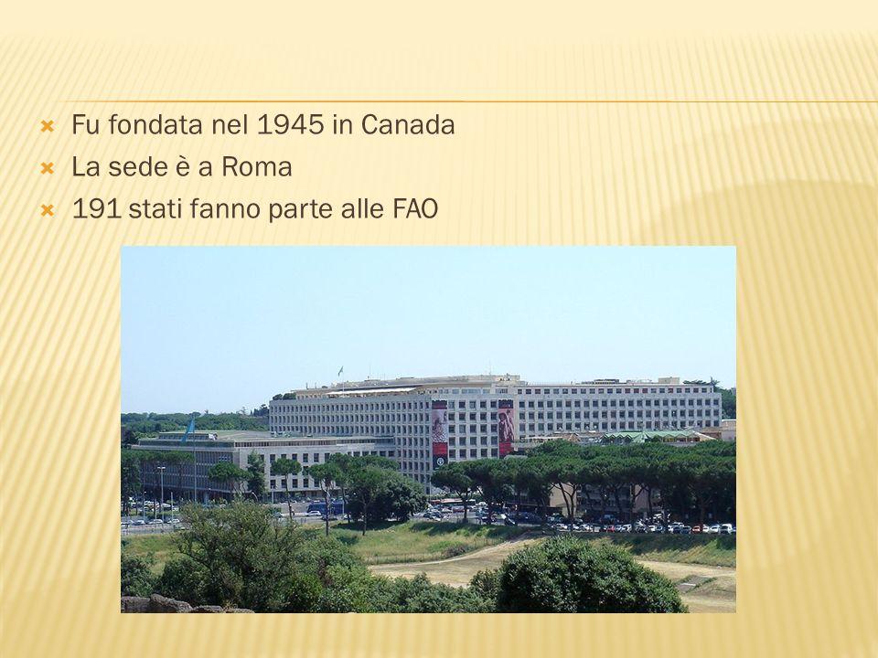 Fu fondata nel 1945 in Canada