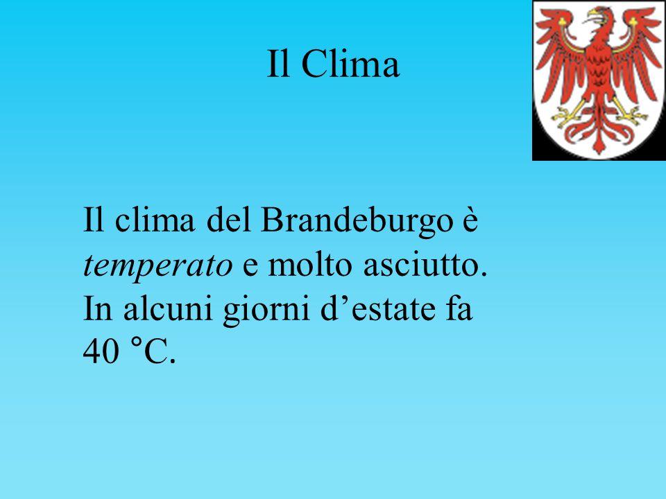 Il Clima Il clima del Brandeburgo è temperato e molto asciutto.