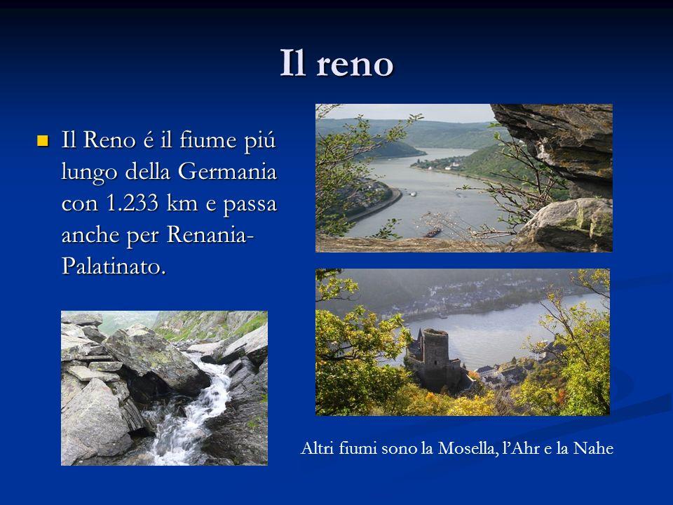 Il reno Il Reno é il fiume piú lungo della Germania con 1.233 km e passa anche per Renania-Palatinato.