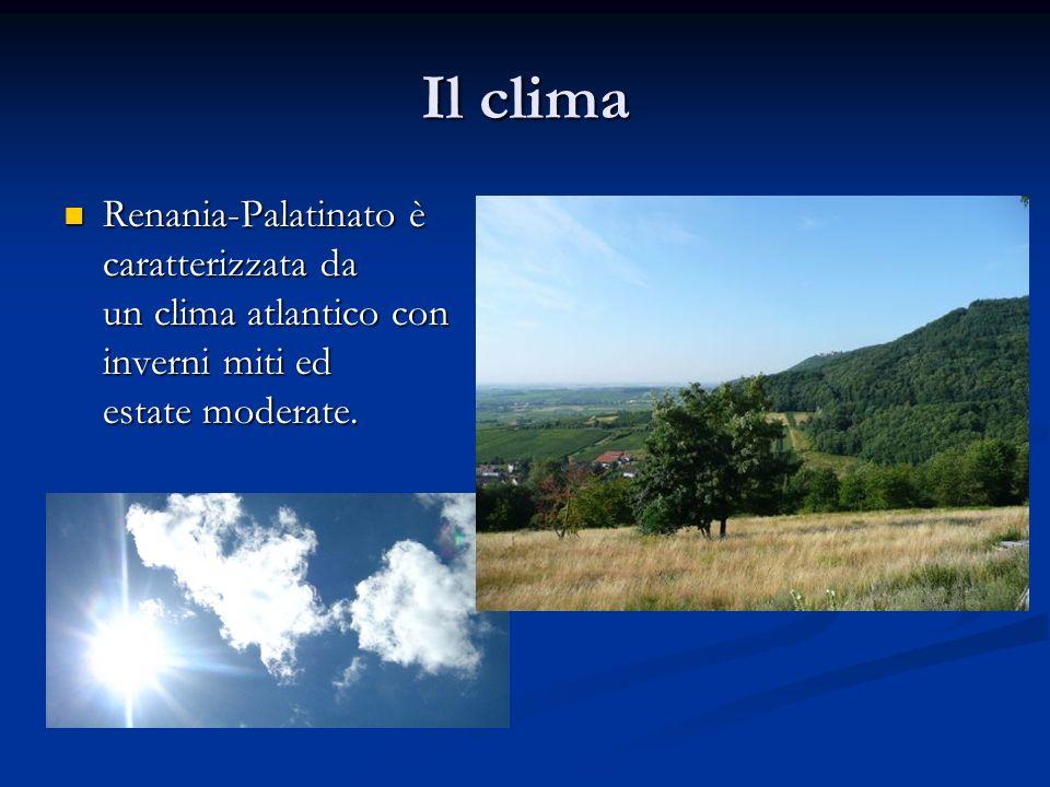 Il clima Renania-Palatinato è caratterizzata da un clima atlantico con inverni miti ed estate moderate.