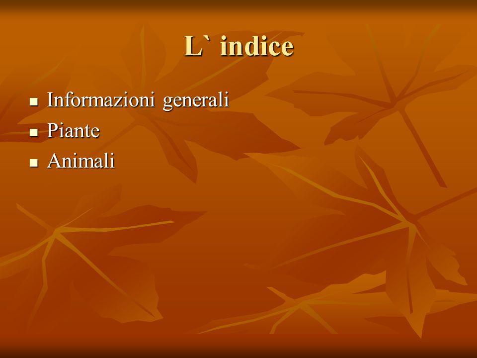 L` indice Informazioni generali Piante Animali