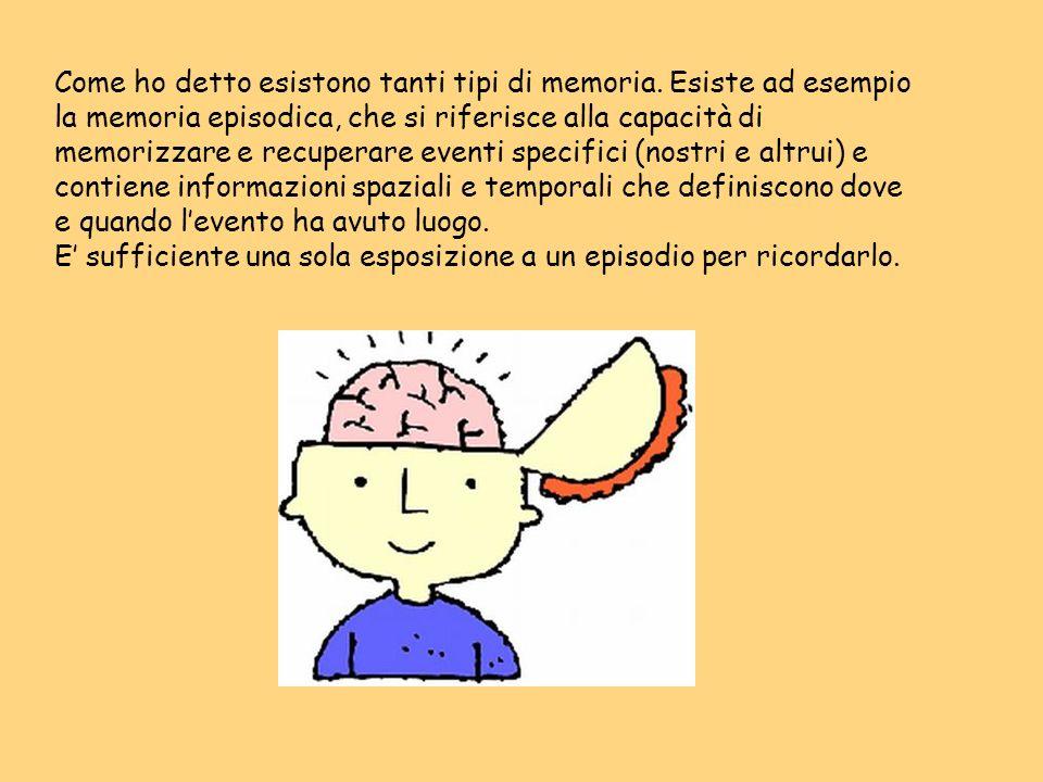 Come ho detto esistono tanti tipi di memoria