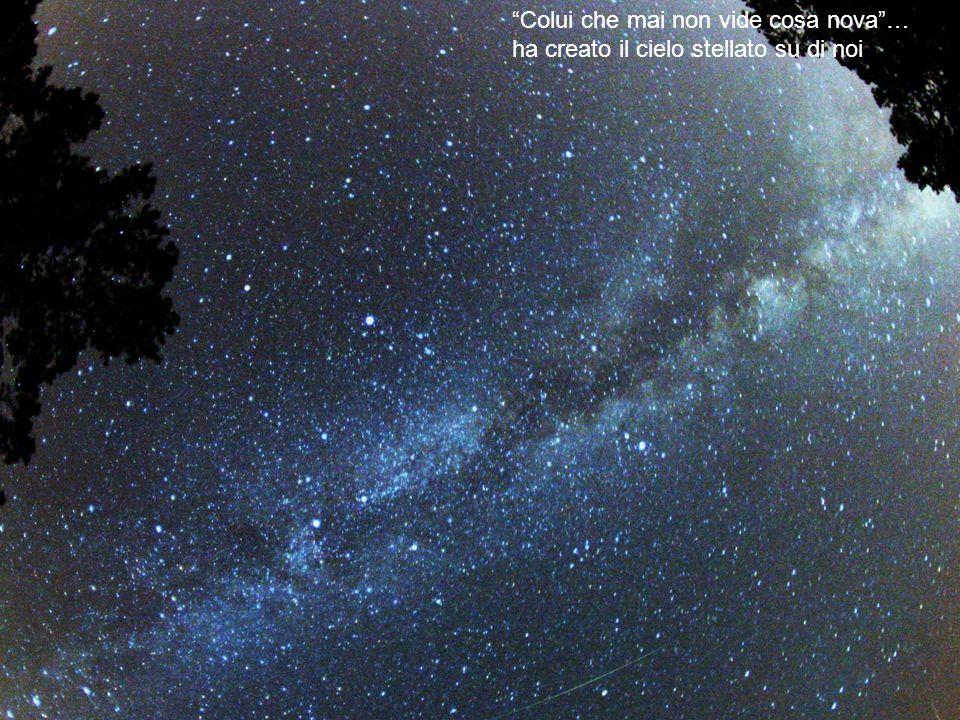 Colui che mai non vide cosa nova … ha creato il cielo stellato su di noi