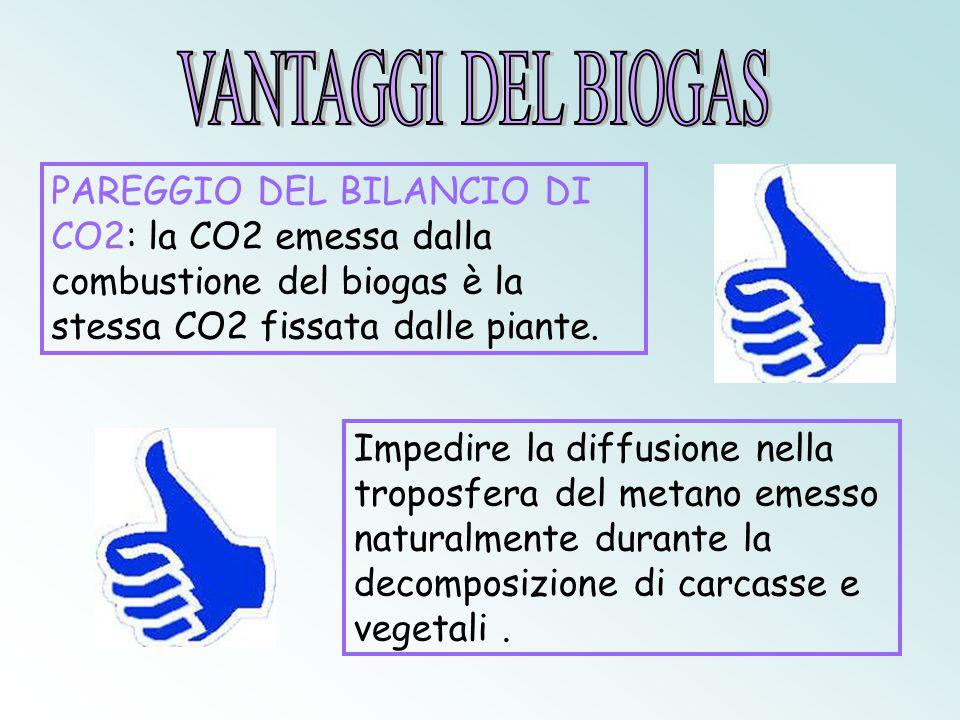 VANTAGGI DEL BIOGAS PAREGGIO DEL BILANCIO DI CO2: la CO2 emessa dalla combustione del biogas è la stessa CO2 fissata dalle piante.