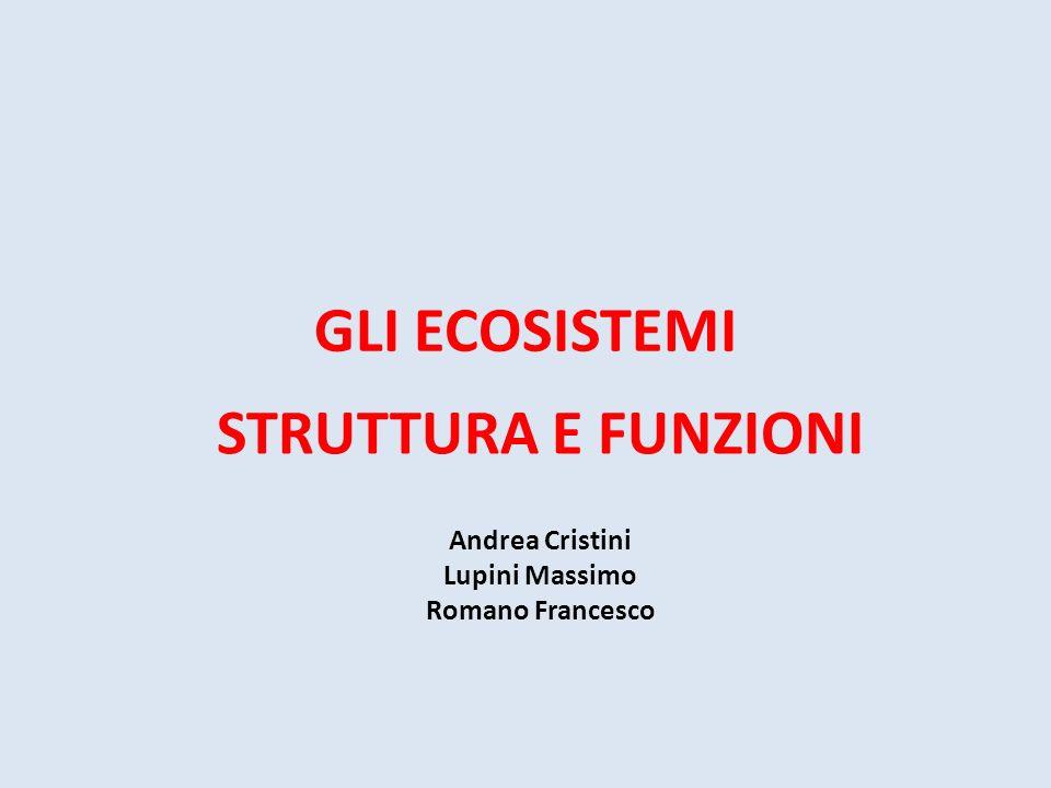 STRUTTURA E FUNZIONI Andrea Cristini Lupini Massimo Romano Francesco