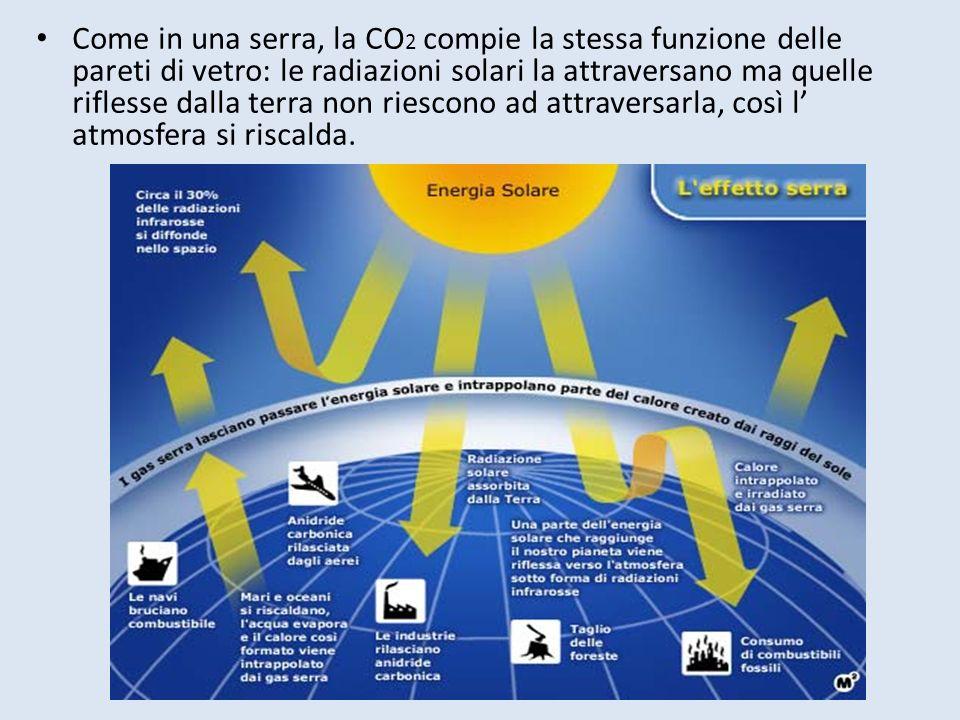Come in una serra, la CO2 compie la stessa funzione delle pareti di vetro: le radiazioni solari la attraversano ma quelle riflesse dalla terra non riescono ad attraversarla, così l' atmosfera si riscalda.