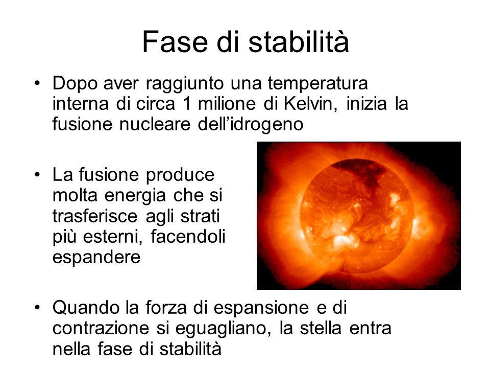 Fase di stabilità Dopo aver raggiunto una temperatura interna di circa 1 milione di Kelvin, inizia la fusione nucleare dell'idrogeno.
