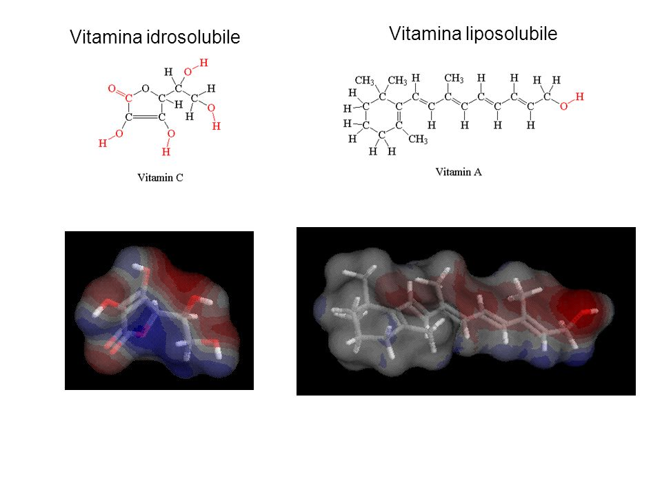Vitamina idrosolubile