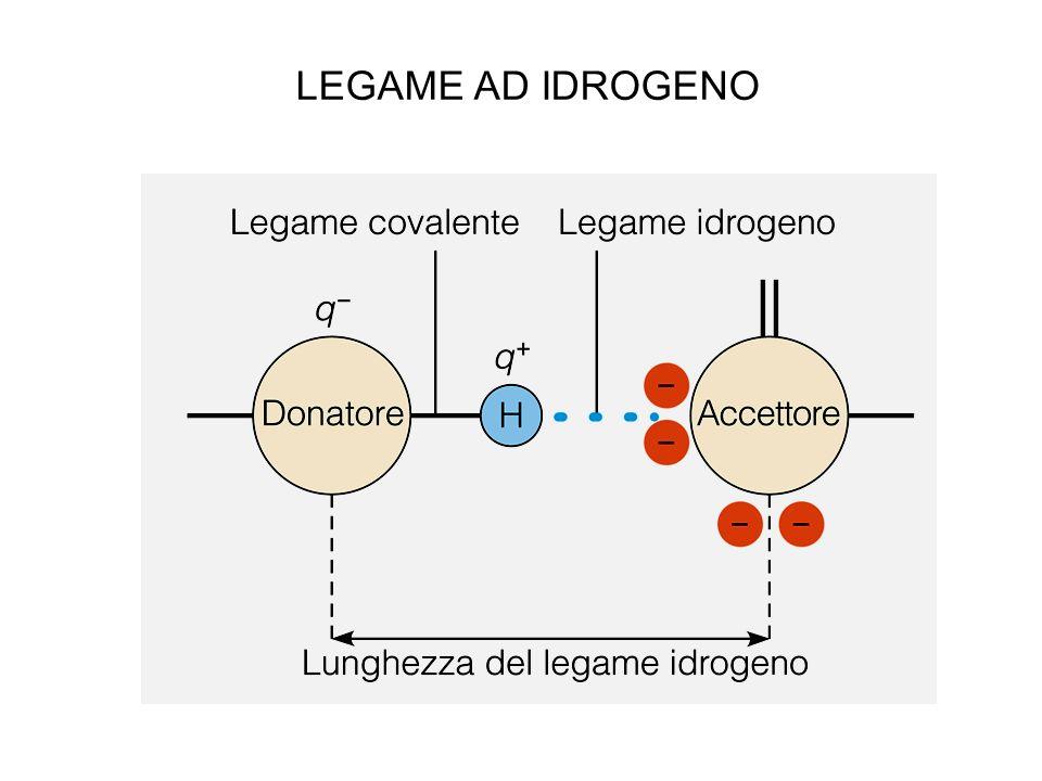 LEGAME AD IDROGENO