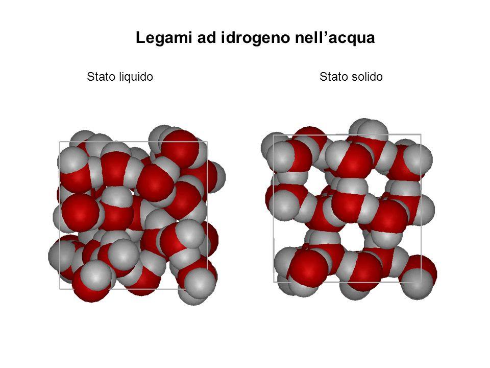 Legami ad idrogeno nell'acqua
