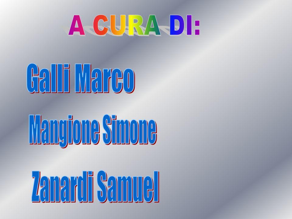 A CURA DI: Galli Marco Mangione Simone Zanardi Samuel