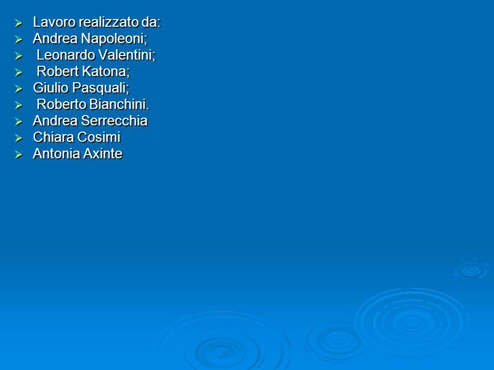 Lavoro realizzato da: Andrea Napoleoni; Leonardo Valentini; Robert Katona; Giulio Pasquali; Roberto Bianchini.