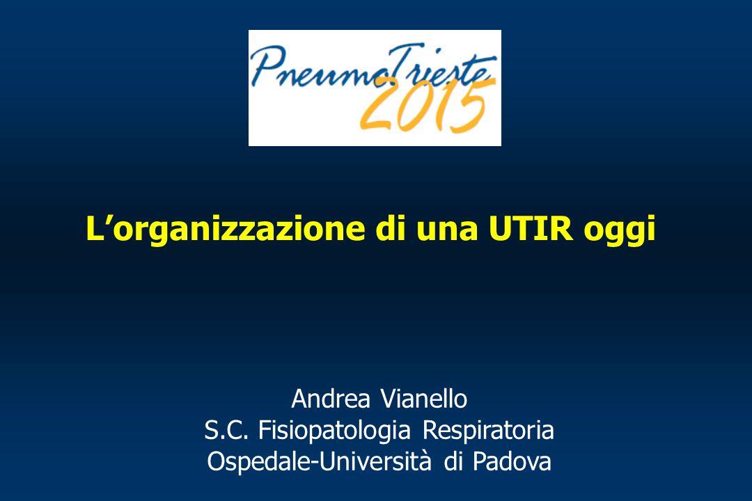 L'organizzazione di una UTIR oggi