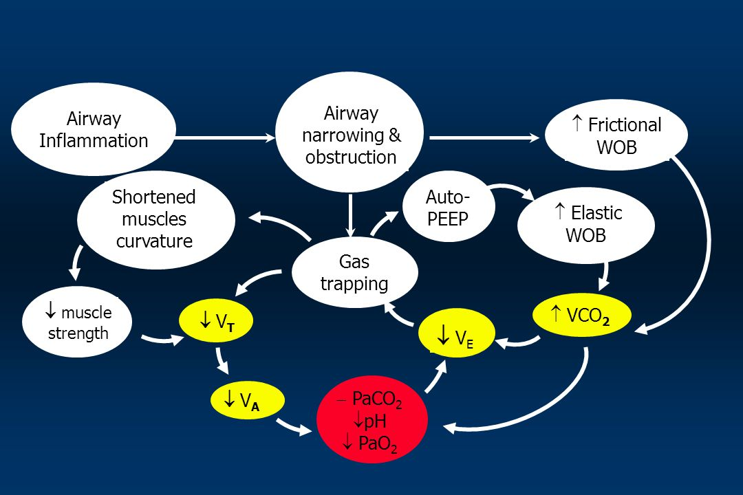  VE Airway narrowing & obstruction Airway Inflammation  Frictional