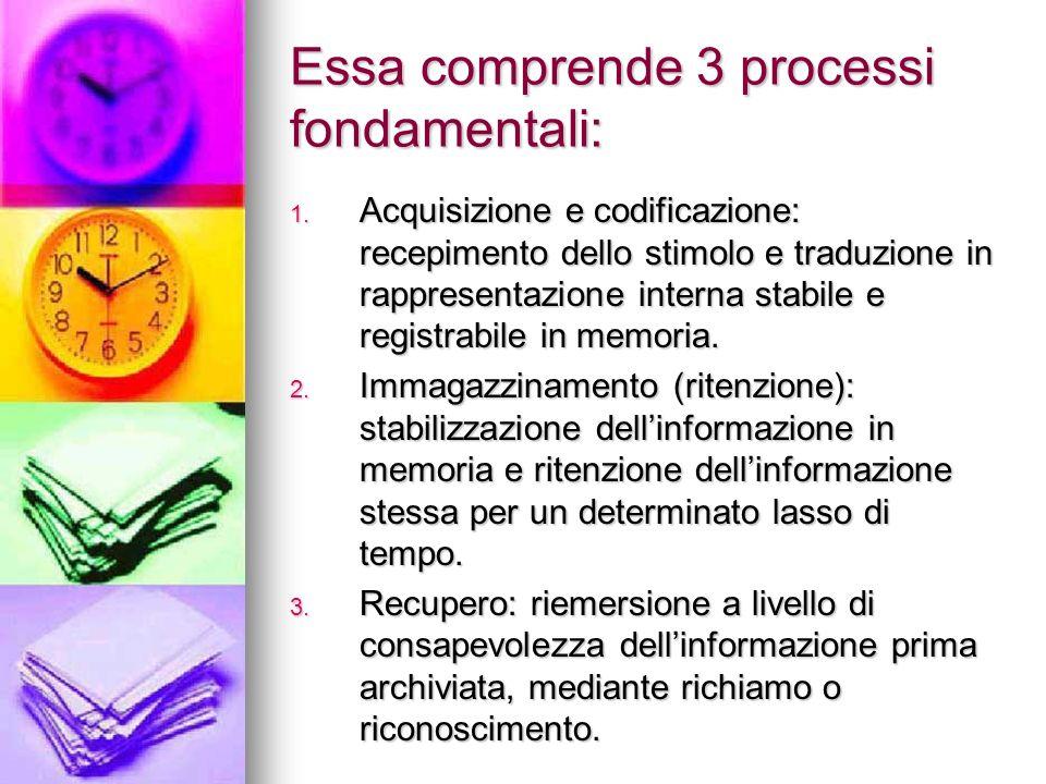 Essa comprende 3 processi fondamentali: