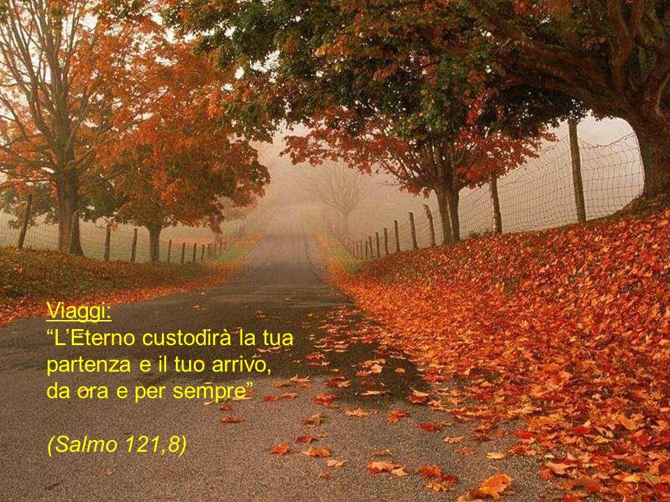 Viaggi: L'Eterno custodirà la tua partenza e il tuo arrivo, da ora e per sempre (Salmo 121,8)