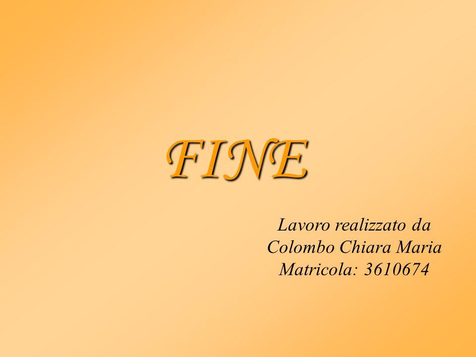 FINE Lavoro realizzato da Colombo Chiara Maria Matricola: 3610674