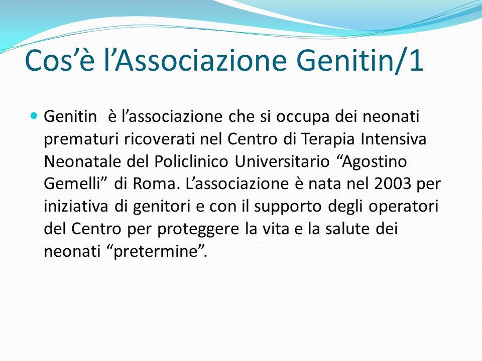 Cos'è l'Associazione Genitin/1