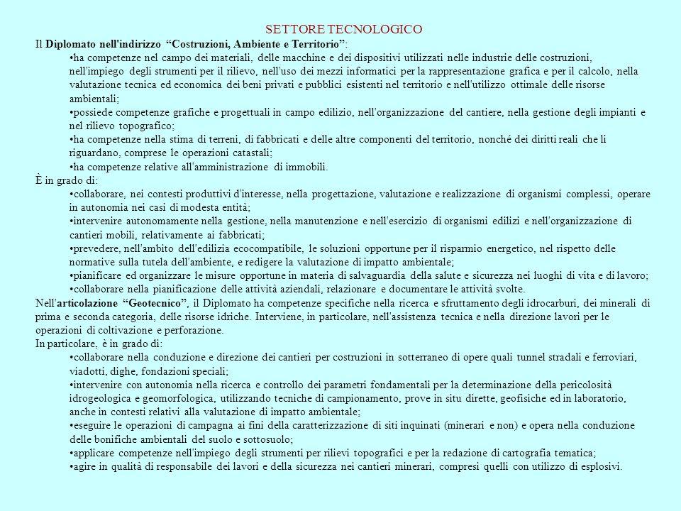 SETTORE TECNOLOGICO Il Diplomato nell indirizzo Costruzioni, Ambiente e Territorio :