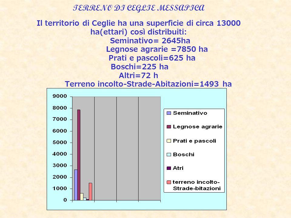 TERRENO DI CEGLIE MESSAPICA Il territorio di Ceglie ha una superficie di circa 13000 ha(ettari) così distribuiti: Seminativo= 2645ha Legnose agrarie =7850 ha Prati e pascoli=625 ha Boschi=225 ha Altri=72 h Terreno incolto-Strade-Abitazioni=1493 ha