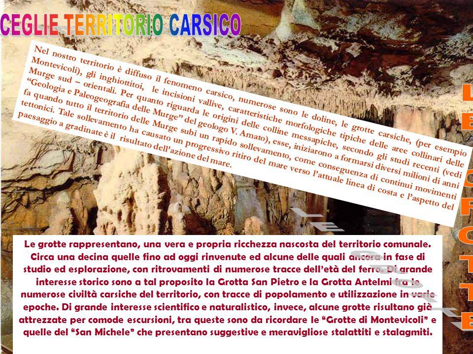 CEGLIE TERRITORIO CARSICO