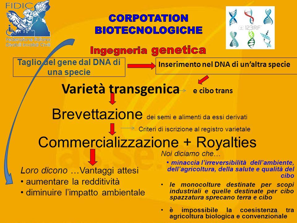 Taglio del gene dal DNA di una specie Varietà transgenica e cibo trans