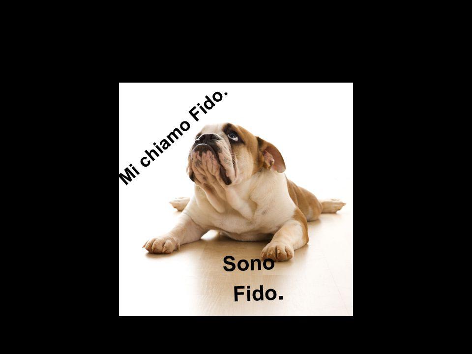 Mi chiamo Fido. Sono Fido.