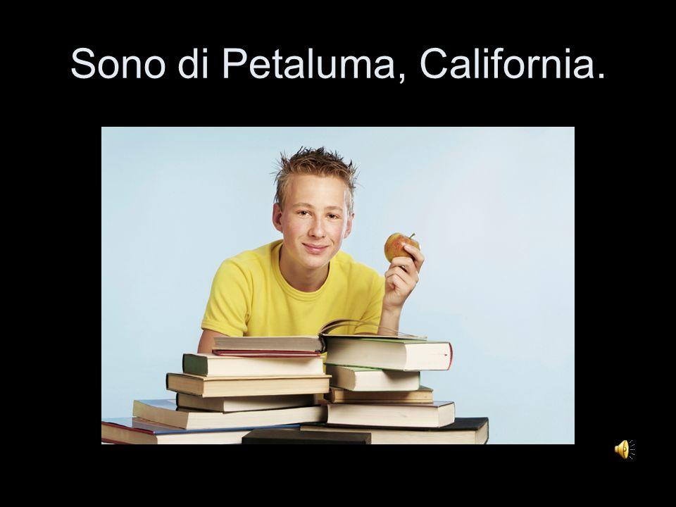 Sono di Petaluma, California.