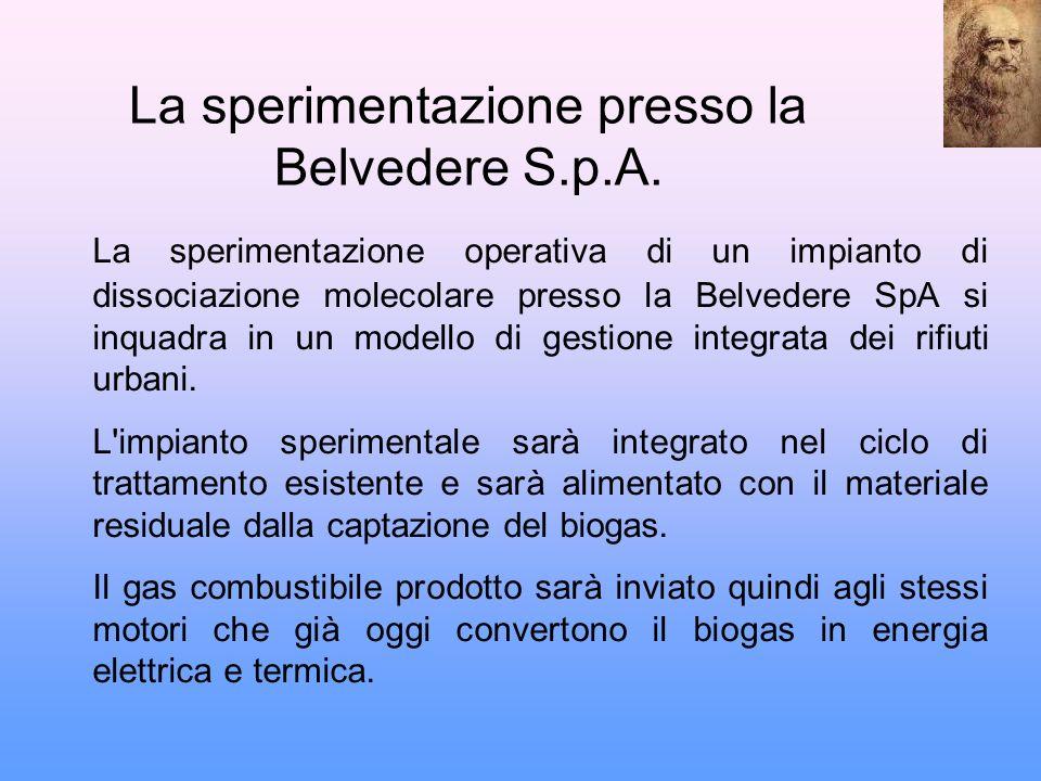 La sperimentazione presso la Belvedere S.p.A.