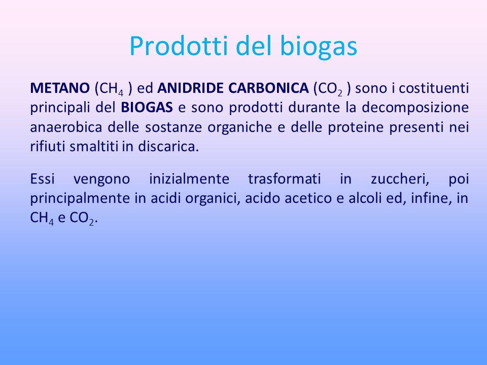Prodotti del biogas