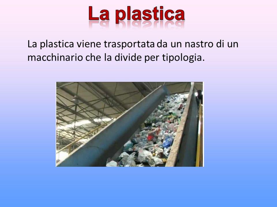 La plastica viene trasportata da un nastro di un macchinario che la divide per tipologia.