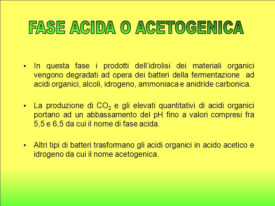 FASE ACIDA O ACETOGENICA
