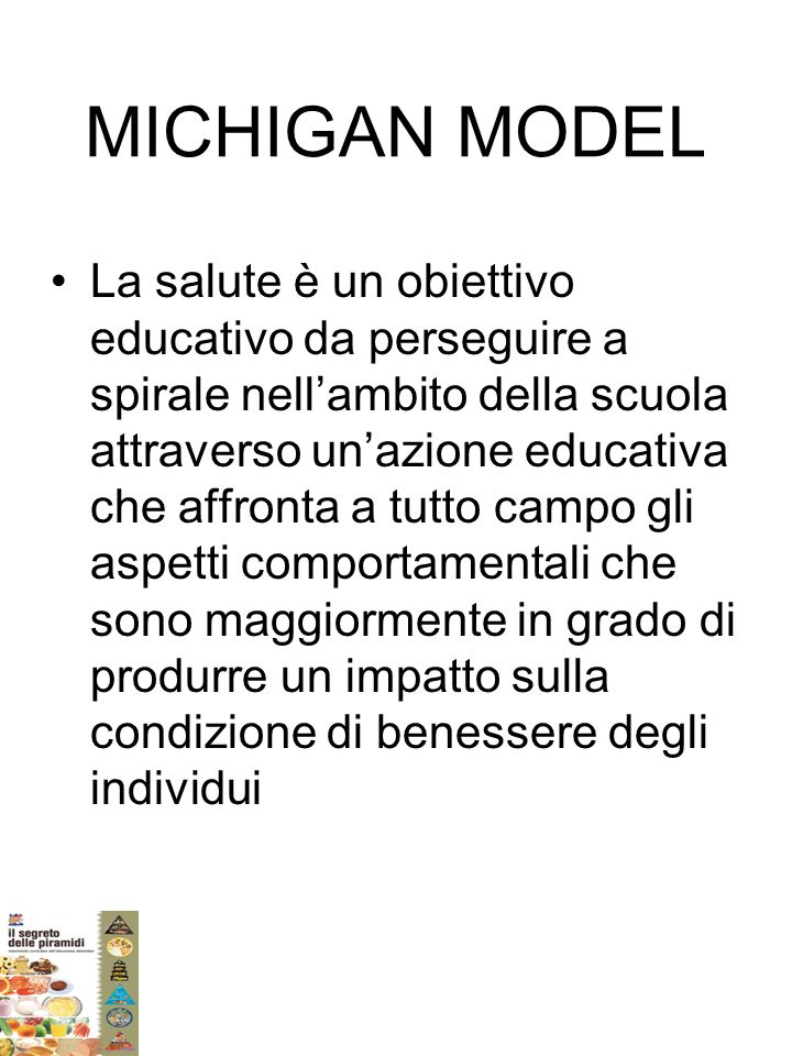 MICHIGAN MODEL