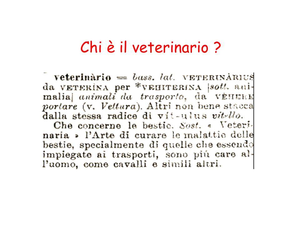 Chi è il veterinario