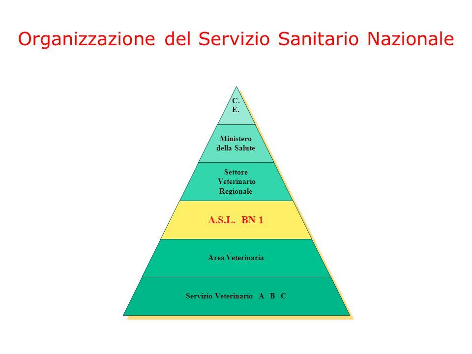 Veterinario Regionale Servizio Veterinario A B C