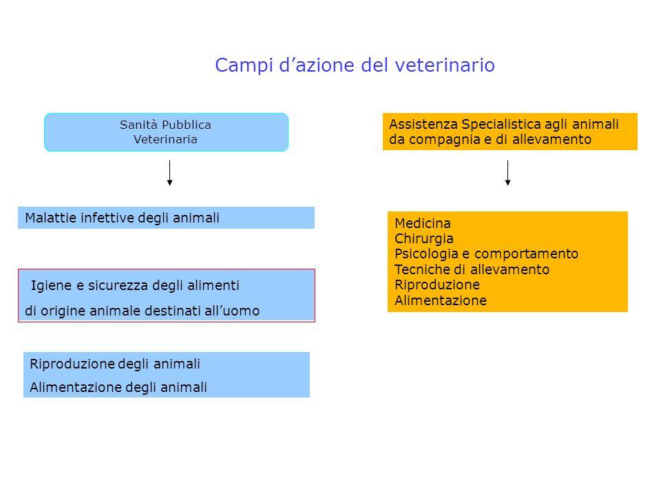 Campi d'azione del veterinario